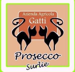 Prosecco sur lie Azienda Agricola Lorenzo Gatti