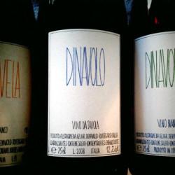 Dinavolo 2008