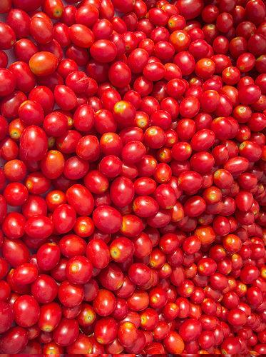 salsa fatta in casa pomodori