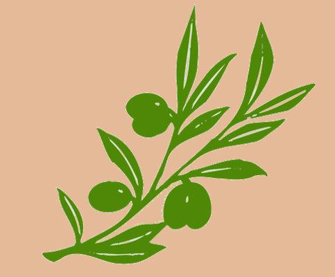 qualità dell'olio ramoscello d'ulivo