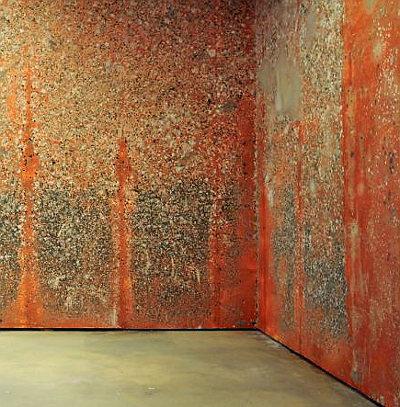 Michel Blazy mur-de-poils-de-carotte