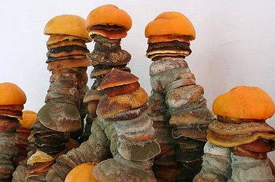 Michel Blazy scultura
