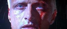 Pausa pranzo Blade Runner