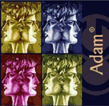 Adam 2013 Greco Cantina Giardino etichetta