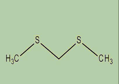 catastrofe olfattiva formula chimica bismetiltiometano