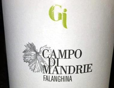 Falanghina Campo di Mandrie 2014 etichetta