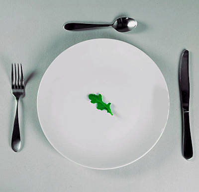 la Nouvelle Cuisine è viva e lotta con noi piatto