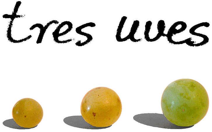 Tres uves 2013 etichetta