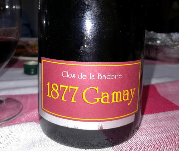1877 Gamay Close de la Briderie etichetta fronte