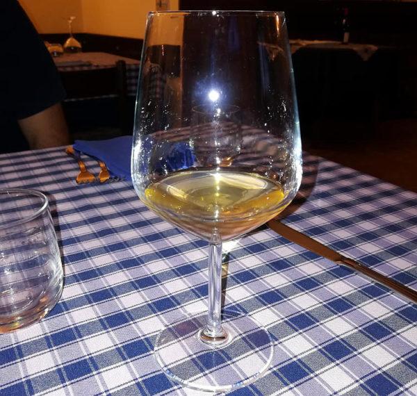 sassaia 2016 angiolino Maule Calice vino