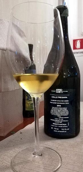 Colle fregiara 2016 trebbiano Sopletino calice e bottiglia