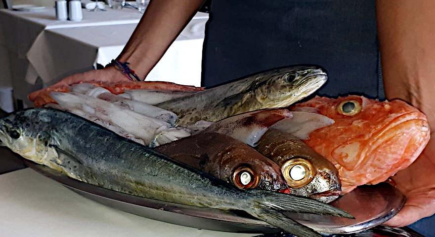 T'Anna Mari Marsaxlokk malta vassoio pesci a tavola