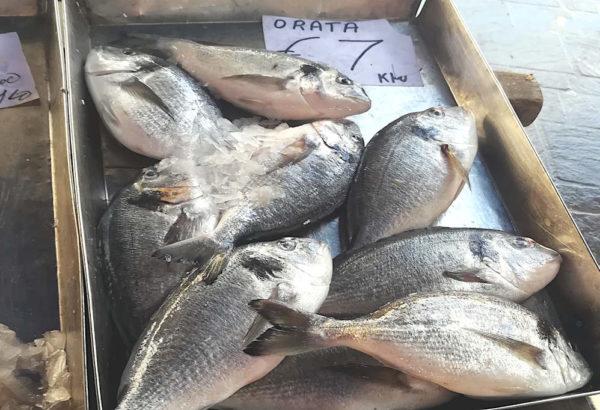 mercato di Marsaxlokk malta orate in vendita sui banchi