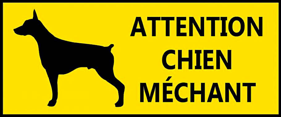 Attention Chenin méchant 2017 Nicolas Reau